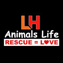 LH anlmals Life