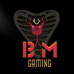 BLACK MAMBA GAMING