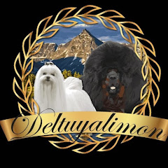 Cría selectiva Deltuyalimon