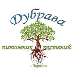 Питомник растений Дубрава