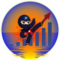 The Economic Ninja