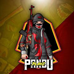 Pandu PlayZ