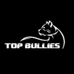 Top Bullies