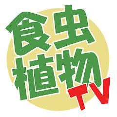 食虫植物TV