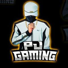 P_J GAMING