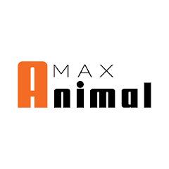 Max Animal