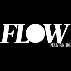 Flow Mountain Bike