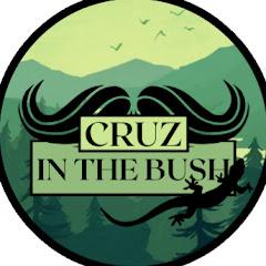 Cruz in the Bush