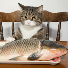 Клан Рыбхознадзор