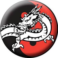 Dragão Chinês Kung Fu