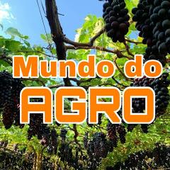 Mundo do Agro