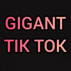 GIGANT TIK TOK