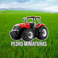 Pedro Miniaturas