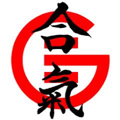 Guillaume Erard - Aikido in Japan