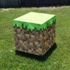 MIRL - Minecraft Real POV