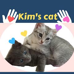 Kim's cat